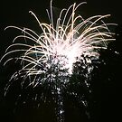 Forest Fireworks II by mojo1160