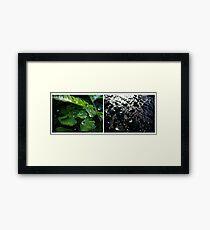 viridian noir Framed Print