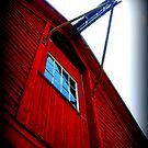 Hay, Look Up Here!!! by Debbie Robbins