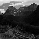 Glacier National Park   by Rodney Johnson