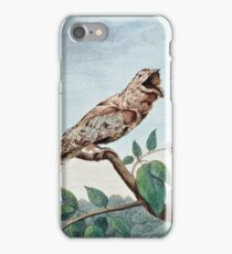 Great Goatsucker Bird Drawing iPhone Case/Skin
