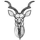 Kudu von inkedinred
