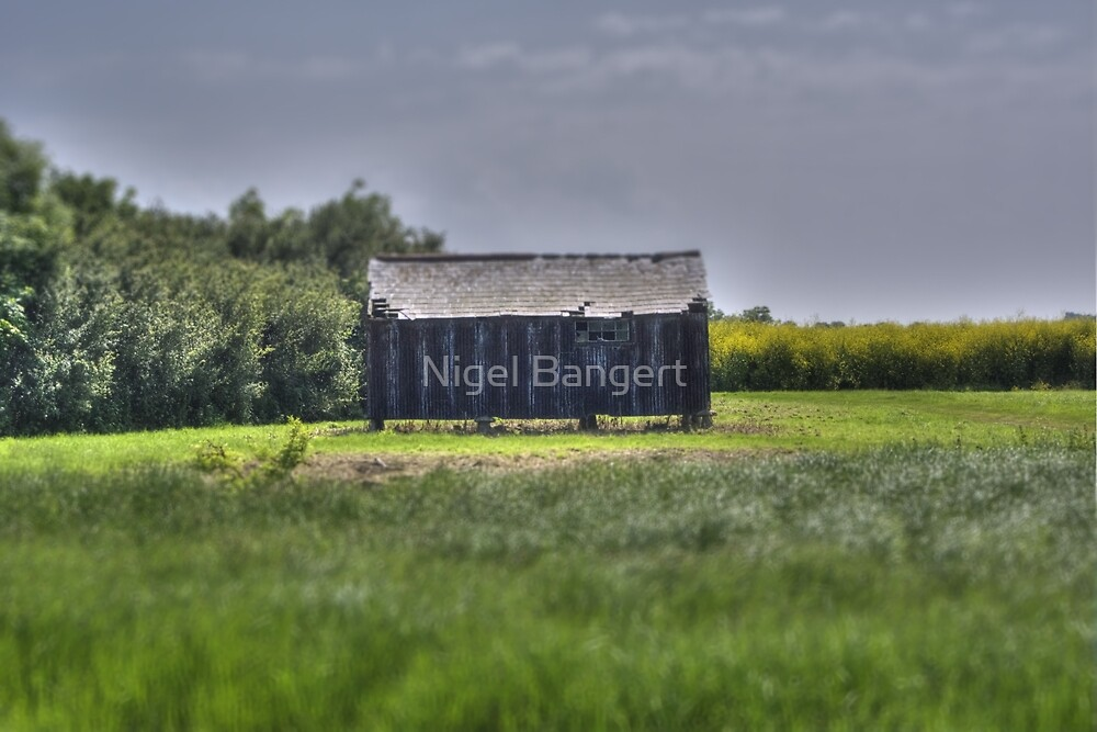 The Owl Barn by Nigel Bangert