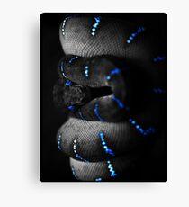 The Black Snake (alpha bkground for dark tshirts) Canvas Print