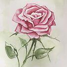 rose by Harriet Wenske