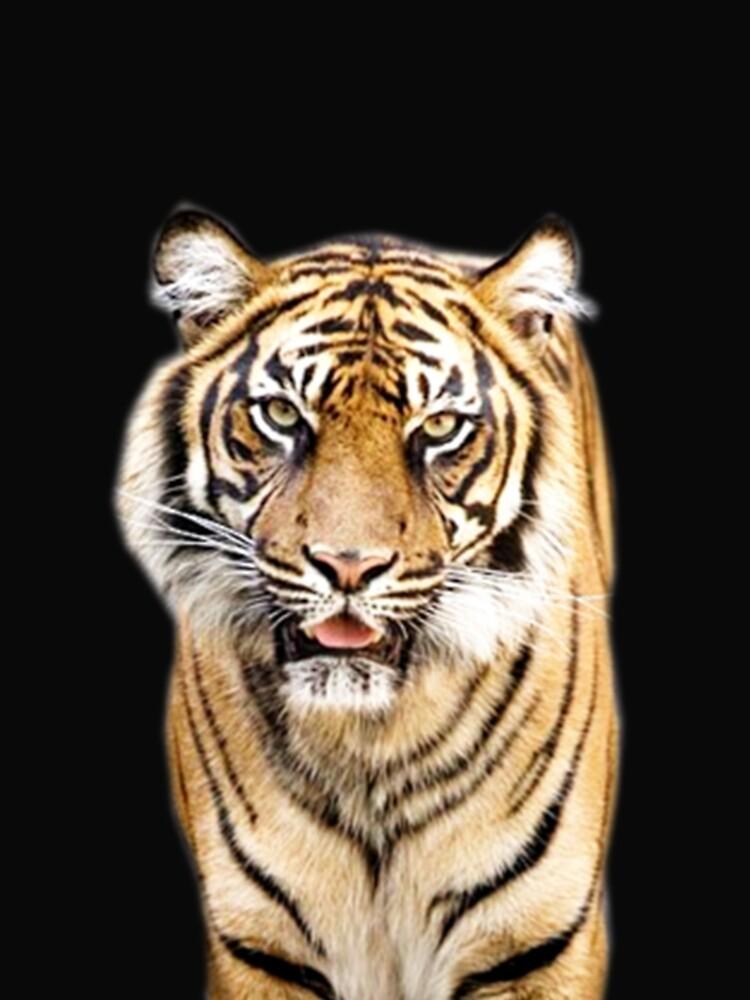 Tiger von Vitalia