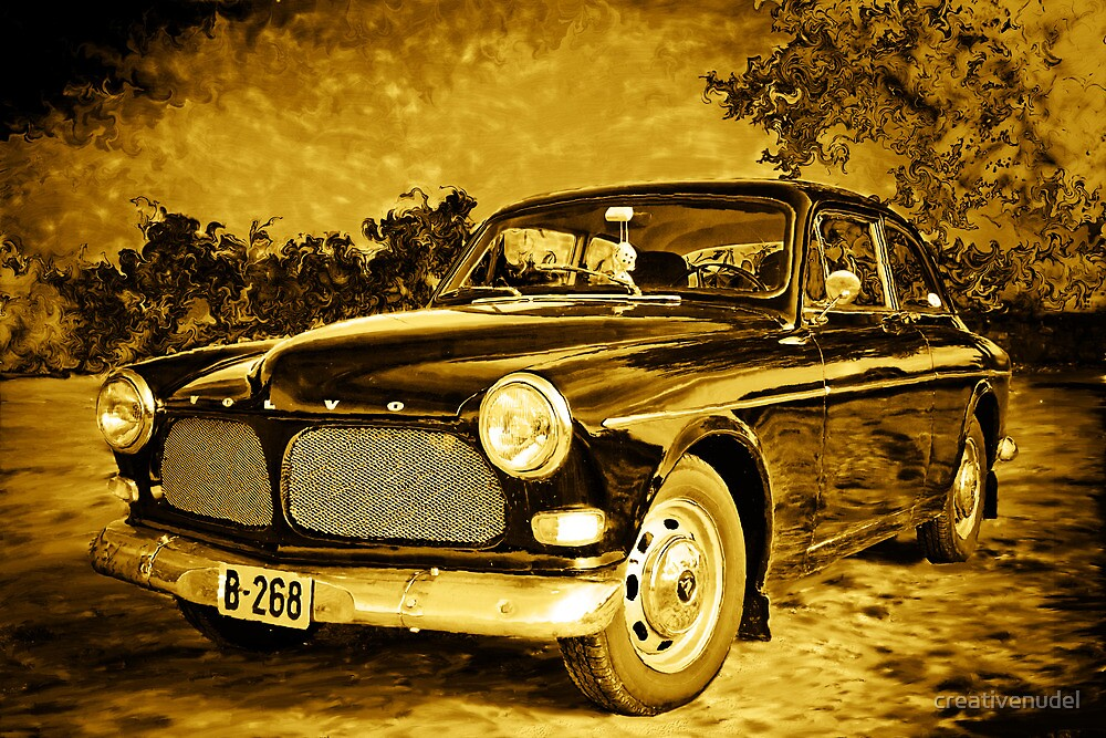 Old Volvo by Laura Veith