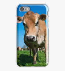 Jersey Moo  iPhone Case/Skin
