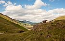 Newlands Pass by Val Saxby
