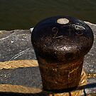 Antwerp Harbour - Bollard Nr 275 - Home for a few  days by Gilberte