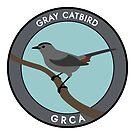 Gray Catbird by JadaFitch