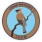 Cedar Waxwing by JadaFitch