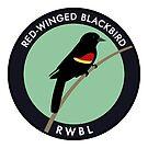 Red-winged Blackbird by JadaFitch