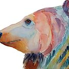 Colorful brown bear by doggyshop
