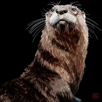 Otter by RoguePlanets