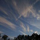 Busy Sky by AlGrover