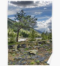 Kootenai River Drainage Poster