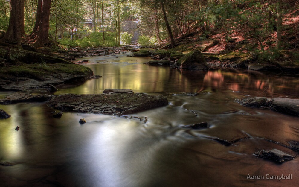 Down stream by Aaron Campbell
