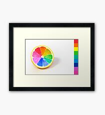 Pantone Colour Wheel Framed Print
