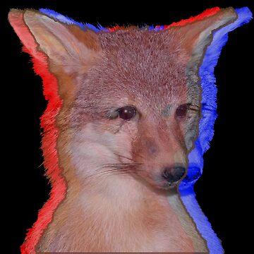 Cool Fox by bellamendiola