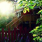 My Backyard :D by eleveneleven