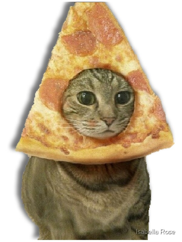 Quot Cat With Pizza Head Quot Stickers By Isabella Mendiola
