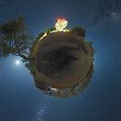 Planet Dish by Alex Cherney