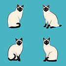 «Gatos siameses en círculos azules pegatinas» de nadyanadya