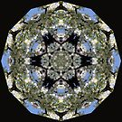 Cherry Blossom Kaleidescope Square by MarjorieB