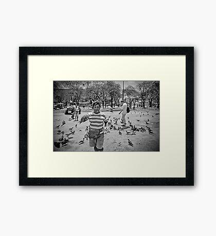 Tourist trap Framed Print
