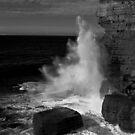 Fossil Bay, Tasmania by CezB