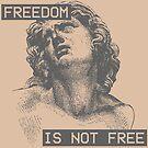Freedom Isn't Free by CentipedeNation
