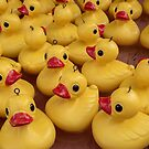 Just ducky! by RebeccaHambyArt