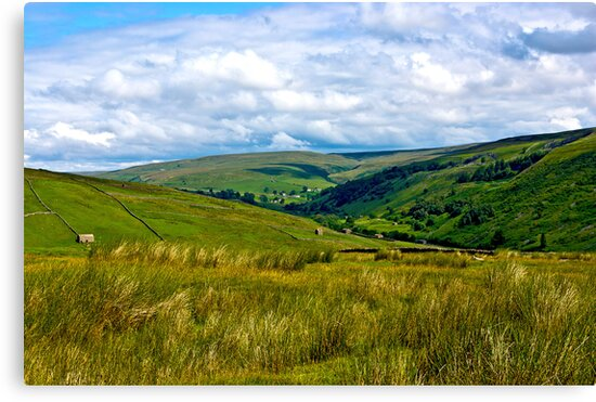 How Green is My Valley by Trevor Kersley