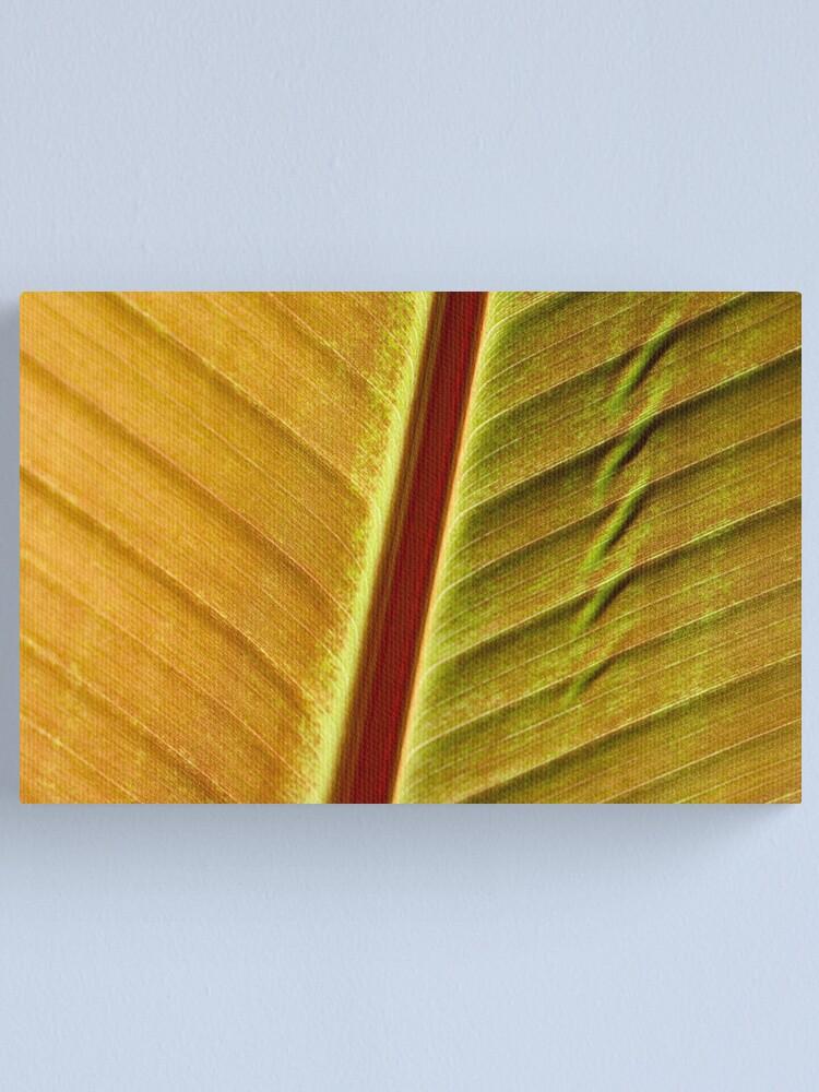 Alternate view of bronze leaf Canvas Print