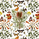 Banksia,Butterflies and bees by Leo Rolph
