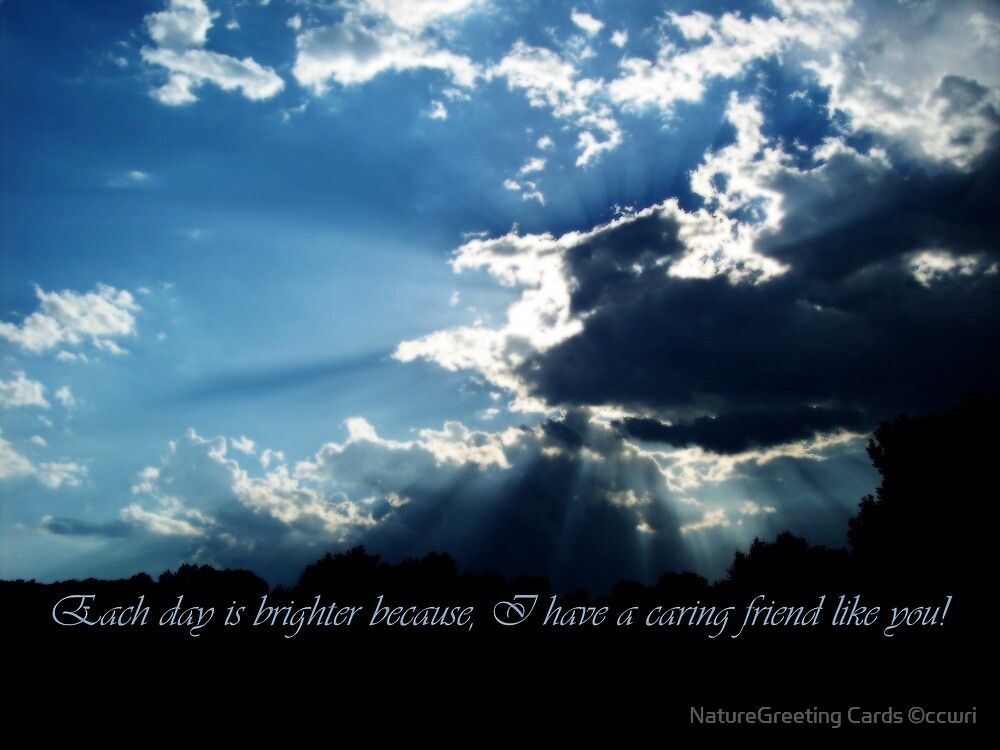 Friends Are Like Heaven's Light ~ Card by NatureGreeting Cards ©ccwri