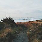 Ein Tag am Meer von Eoxe