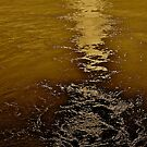 Golden Sunrise . My love Norway . Vestvagoy Lofots . Perfect. by Brown Sugar . Favorites: 5 Views: 351. by © Andrzej Goszcz,M.D. Ph.D
