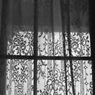 Window Lace by Heather Friedman