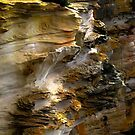 Rock Art - Outer North Head - Sydney  by Neil Ross