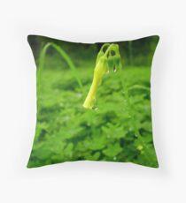 oxalis pes-caprae. Throw Pillow