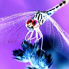 Girly Dragonfly by Sunshinesmile83