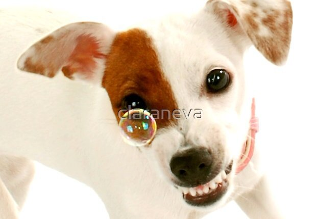 Coco says Sausageeeees! by claraneva