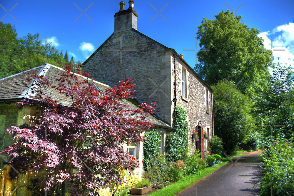 Cottage at New Lanark by Tom Gomez