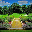 Paradise Park by Linda Miller Gesualdo