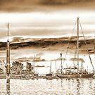Naniamo Harbor by Kat Miller