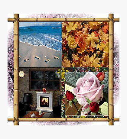 4 Seasons Photographic Print