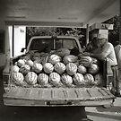 Watermelon Truck by © CK Caldwell IPA