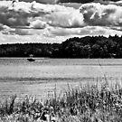 NH Landscape Seacoast B&W by Edward Myers